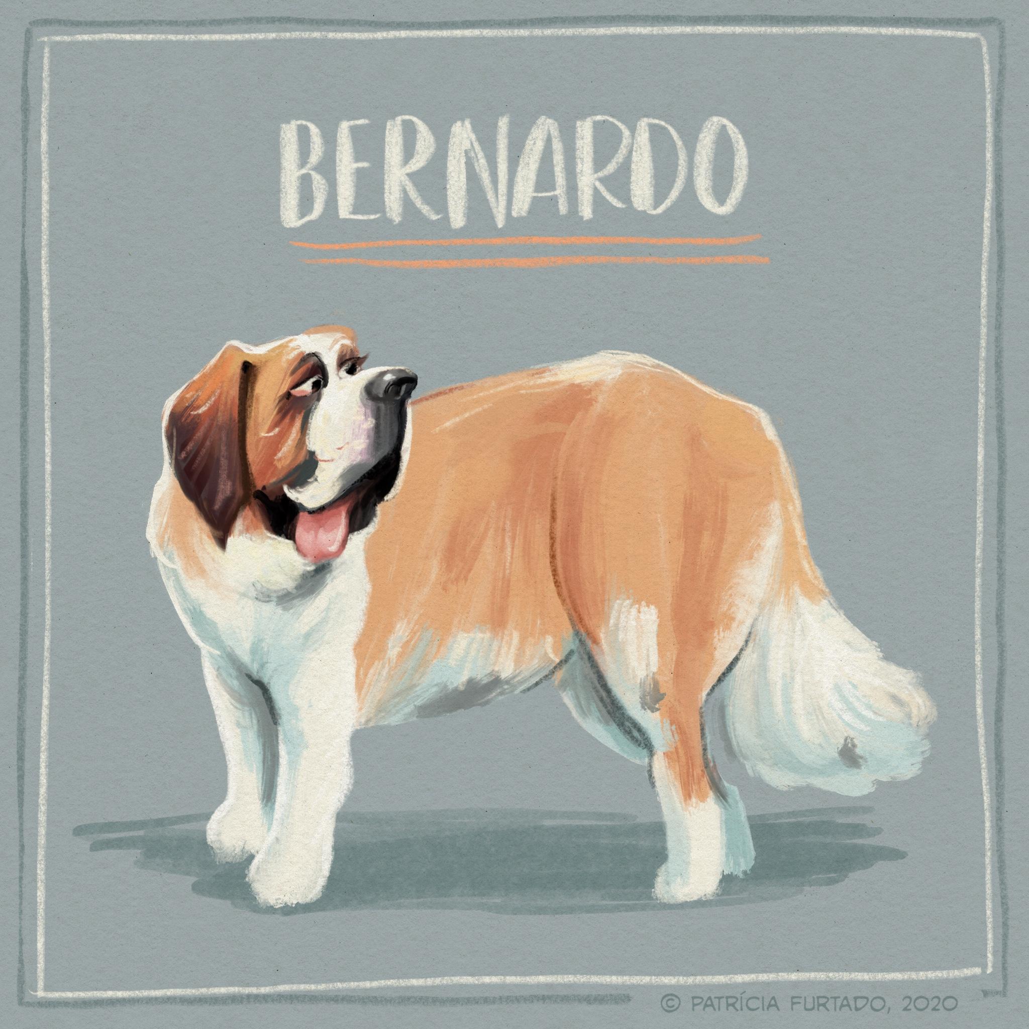 Bernardo